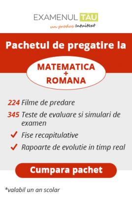 ExamenulTau.ro - Licenţă Română şi Matematică-  1 ani