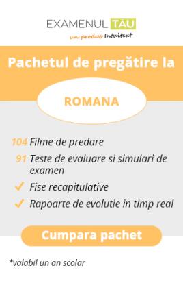ExamenulTau.ro - Licenţă Română -  1 an